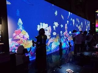 お絵かき水族館DSC_5743.jpg