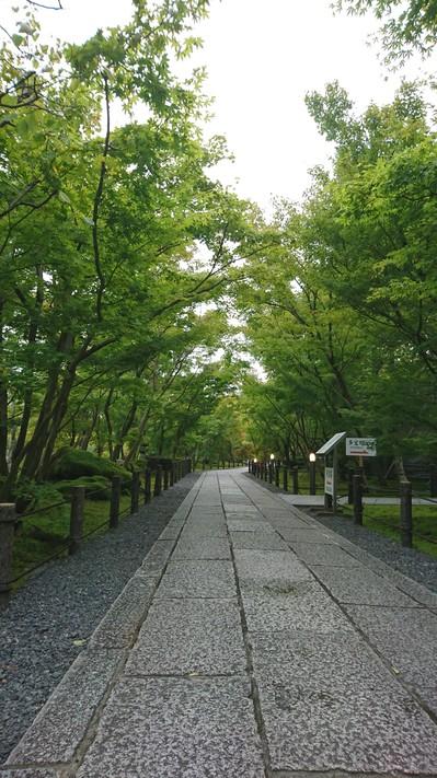 永観堂2.JPG