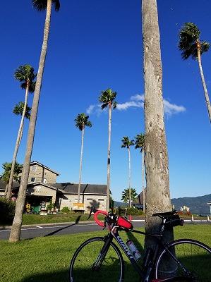s-ハワイ 20181021_081632.jpg