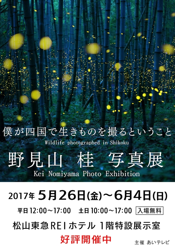 2017-nomiyama.jpg