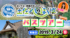 2019-02kouchi-mid.jpg
