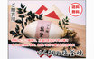 愛媛宇和海産 『 鯛の塩釜焼き (大) 』 愛南漁師の贈り物 【送料無料】