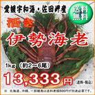 愛媛産 『 天然 活き 伊勢海老 1kg 』 【送料無料】