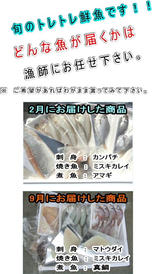 2014-11-ryo.jpg