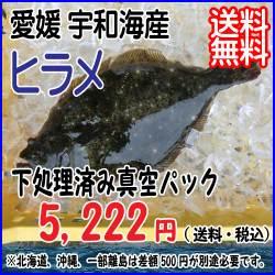 2015-01hirame-1.jpg