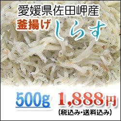500-sirasu.jpg