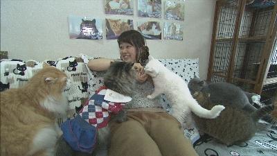 2月22日は、「ネコの日」!ということで、県内のネコ、イヌにちなんだ話題を特集!