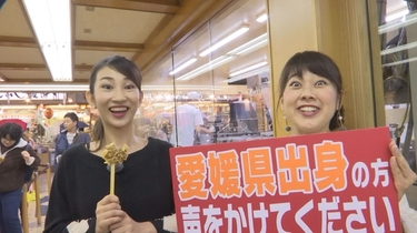 突撃リサーチ! 広島で愛媛を探せ!?