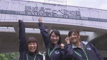 とべ動物園で定点観測してみたら?