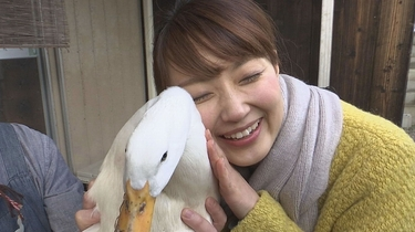 愛媛のいろいろなペットが大集合!!