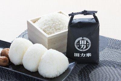2018-10-31toku-kome1.jpg